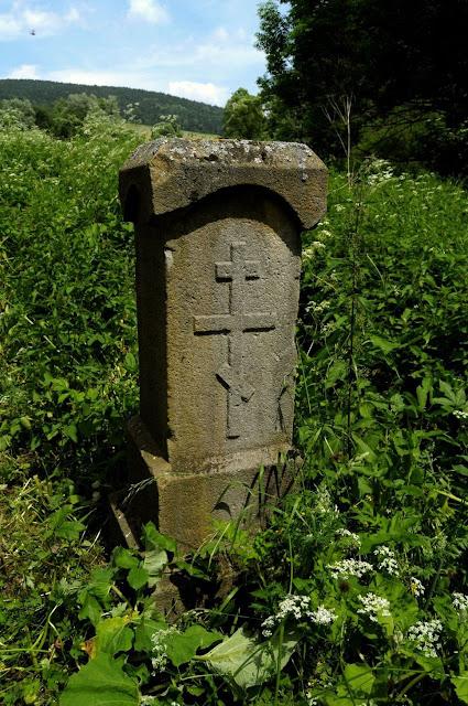 W Polanach Surowicznych - 18.06.2011_051.jpg