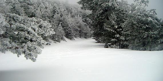 Ruta al puerto de La Fuenfría, diciembre 2012