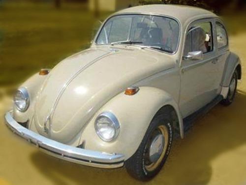 Tan bug 1