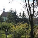 2014.10.19., Klasztor jesienią,fot.s.B. Jurkiewicz (23).JPG