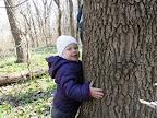 очень любим деревья...к каждому дереву подходит и обнимает :))) интересно, будет так же любить лазить по ним, как любила я :)
