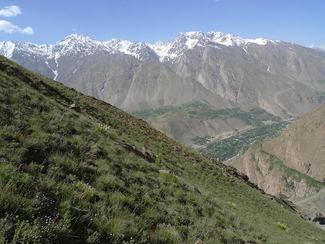 Biotope de Satyrium (Superflua) deria : Sangou-Dara, 2884 m (juste à l'est de Khorog, Pamir occidental), 10 juillet 2009. Photo : J.-F. Charmeux