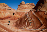 The Wave, Coyote Buttes, Arizona