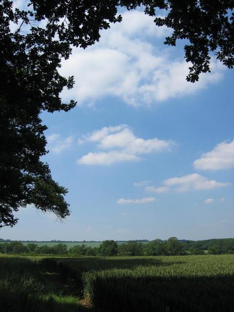 1 wanborough field