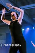 Han Balk Voorster Dansdag 2016-4011-2.jpg