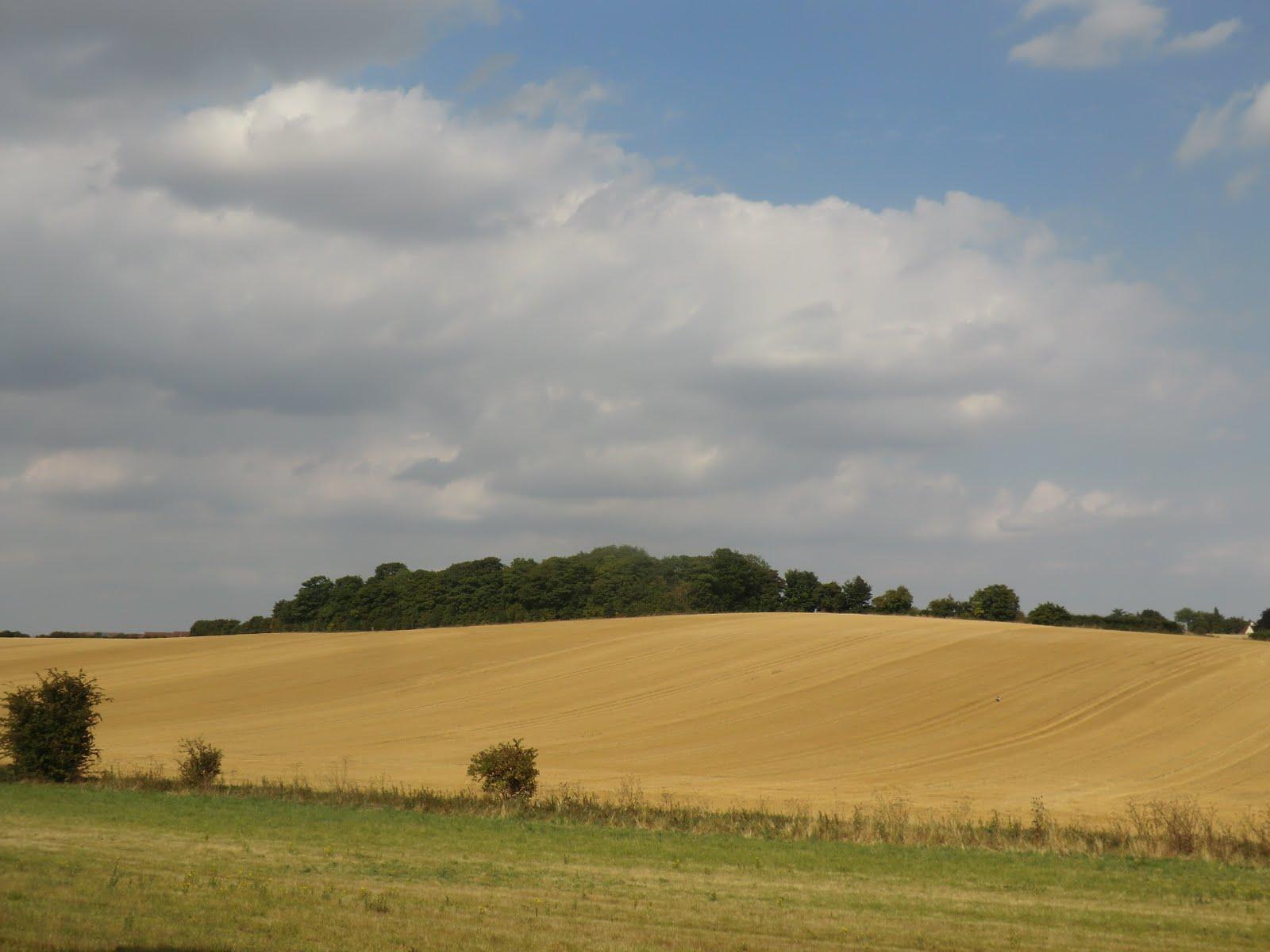 CIMG6059 Essex farmland in late summer