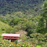 La maison au Mount Totumas, 1900 m (Chiriquí, Panamá), 20 octobre 2014. Photo : J.-M. Gayman