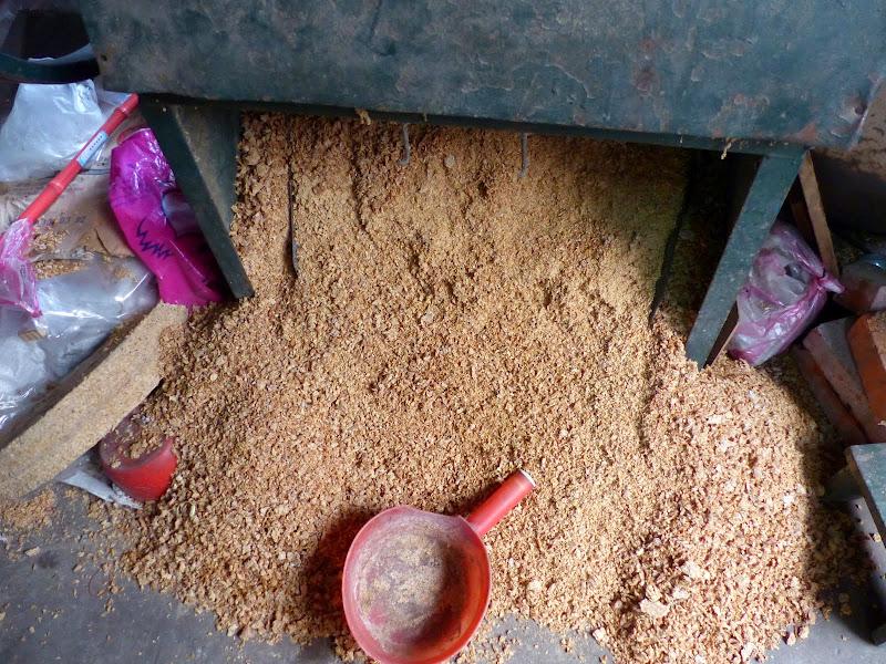 Soja pour fertiliser les plantations