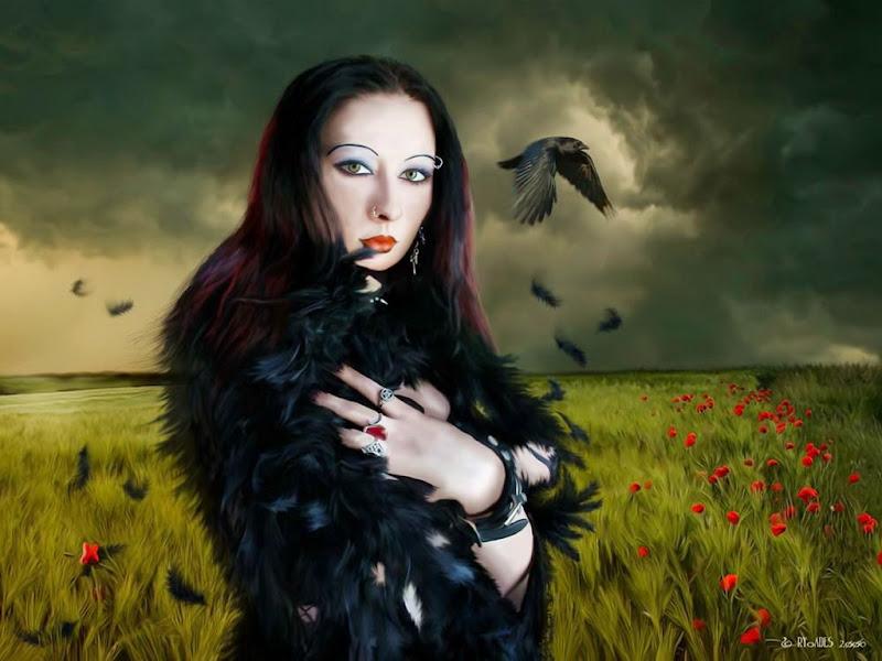 Lady Raven, Ravens