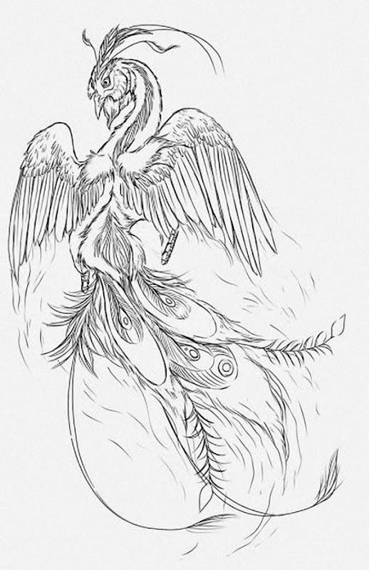 phoenix_tatuagens_6