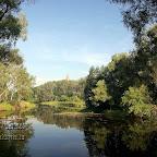 Белогорье - Заповедник лес на Ворскле 033.jpg