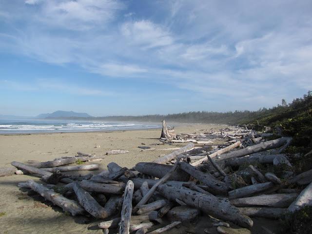 2012 - IMG_0490_Wickaninnish_Beach.JPG