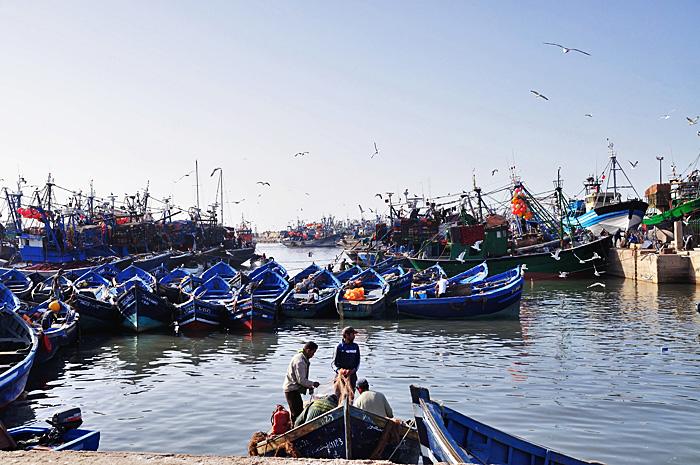 Essaouira10.JPG