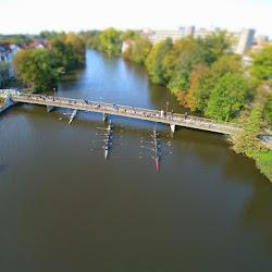 Ruderregatta in Celle 2015 - Luftaufnahme (5).jpg