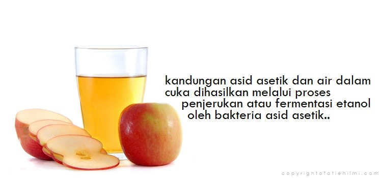 kandungan_cuka_epal