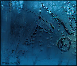 Photo: Icy art in Japan © NF PhotoArt 160202, Hokkaido, Japan http://nfbild2.blogspot.se/2016/11/icy-art-in-japan.html