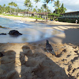 Hawaii Day 7 - 100_7956.JPG