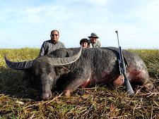 water-buffalo-hunting-13.jpg