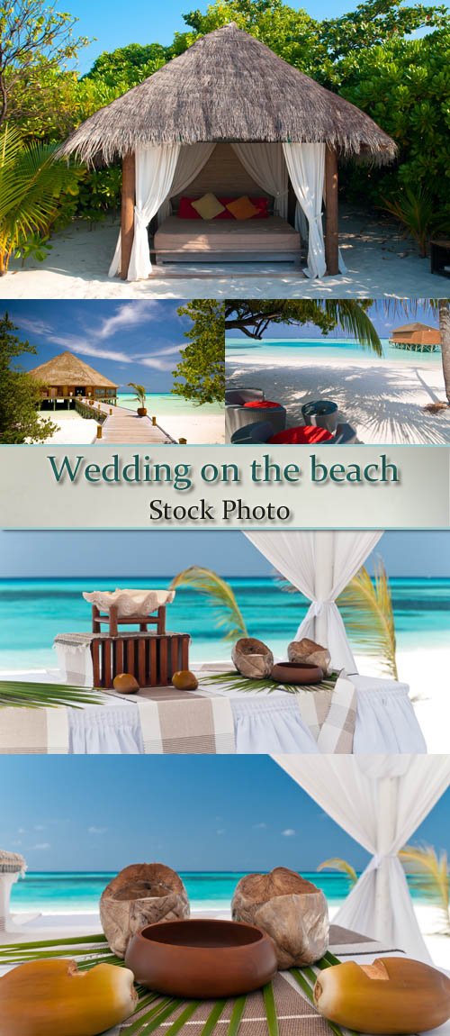 Stock Photo: Wedding on the beach