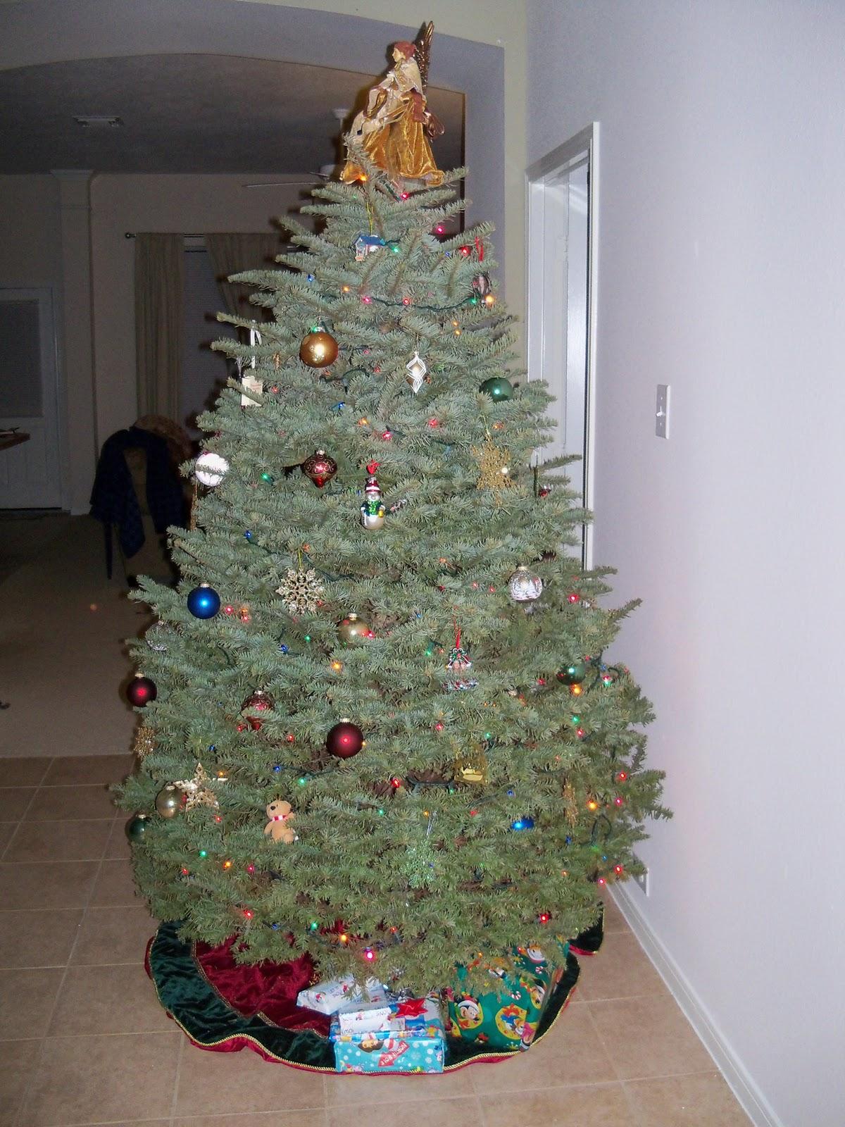 Christmas 2011 - 115_1124.JPG
