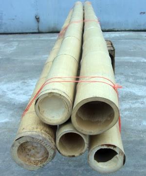 бамбук декоративний