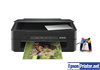 How to reset Epson XP-100 with program