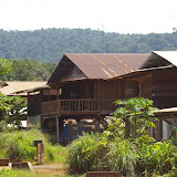 Cacao (Guyane). 23 novembre 2011. Photo : J.-M. Gayman