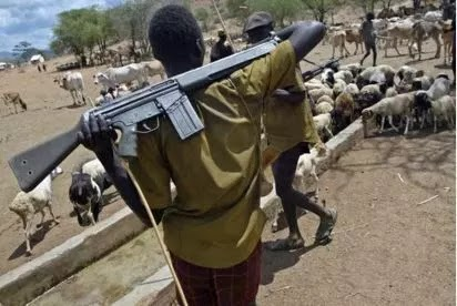 Suspected herdsmen rape, kill 67 yrs old woman in Enugu