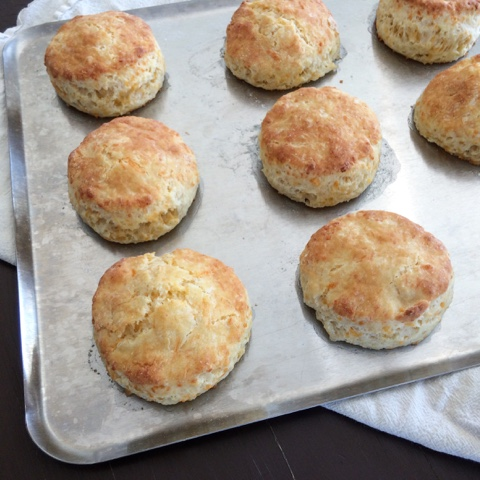 lots of Kick-Ass Cheesy Biscuits
