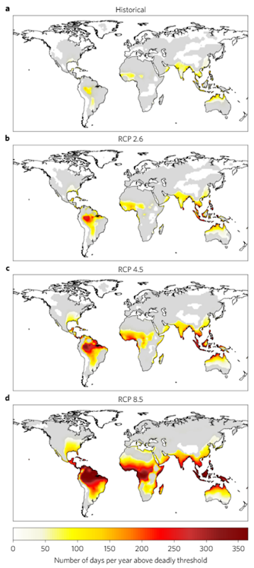Geographical distribution of deadly climatic conditions underdifferent emission scenarios. a–d, Number of days per year exceeding thethreshold of temperature and humidity beyond which climatic conditions become deadly (Fig. 1b), averaged between 1995 and 2005 (a, historical experiment), and between 2090 and 2100 under RCP 2.6 (b), RCP 4.5 (c)and RCP 8.5 (d). Results are based on multimodel medians. Grey areas indicate locations with high uncertainty (that is, the multimodel standard deviation was larger than the projected mean; coefficient of variance >1).The expected lower number of deadly days at higher latitudes (Fig. 4) may help explain the large variability among Earth System Models in the projected number of deadly days at higher latitudes (for example, in thecase for New York (illustrated in Fig. 4j) the one model projects nine deadly days by 2100; yet any other model projecting 18 days will double the variability). Graphic: Mora, et al., 2017 / Nature Climate Change