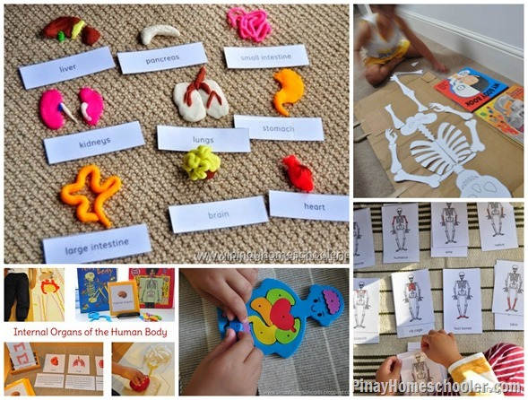 Collection Of Human Body Activities For Kids And Learn Play Link Up The Pinay Homeschooler