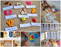 Collection of Human Body Activities for Kids and {Learn & Play Link Up}