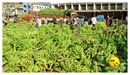 DSC_0024_keralapix.com_banana market