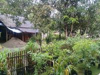 Aktivitas Warga Cipadali Terhenti, Akibat Curah Hujan Tinggi