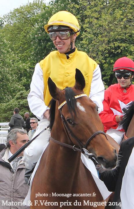 Jockeys' attitudes IMG_0137