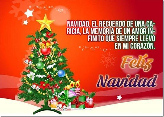 navidad (153)
