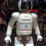asimo by honda at the Miraikan Museum of Emerging Science and Innovation in Odaiba, Tokyo, Japan
