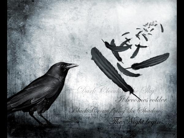Mate, Ravens