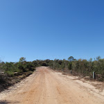 Walking along Warrah Trig Rd (217790)
