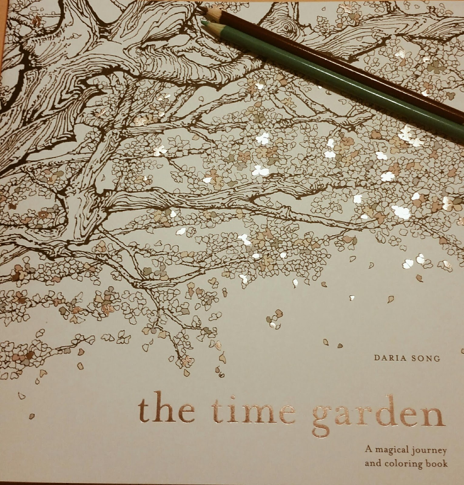 The Time Garden Daria Song