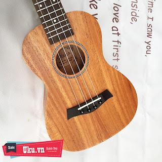 ukulele concert diduo