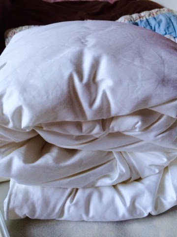 Mulberry Silk Cotbed Duvet