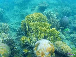 Pulau Harapan, 23-24 Mei 2015 GoPro 09