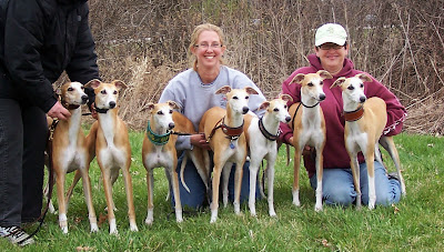 Spirit and 6 of her offspring at the 2015 AWC National in WI - Susan, Righty, Max, Elsa, Deana, Spirit, Galaxy, Ronan, Robin and Moon)