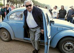 mujica-maggiolino