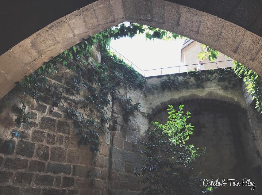 Fotografías del Palacio Real de Olite