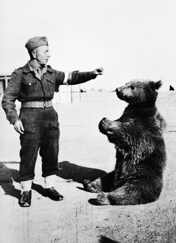 wojtek-soldier-bear-1