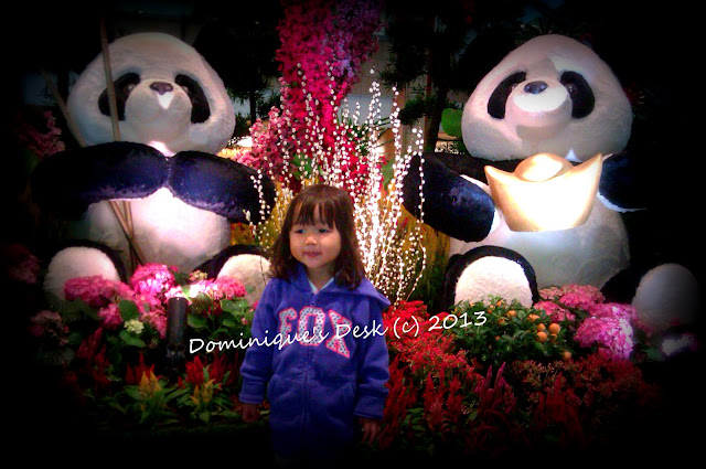 Tiger girl with the Pandas