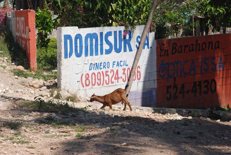 dominican republic - 110.jpg