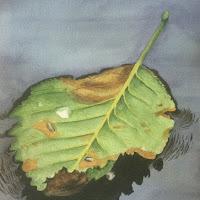 leaf straight.jpg